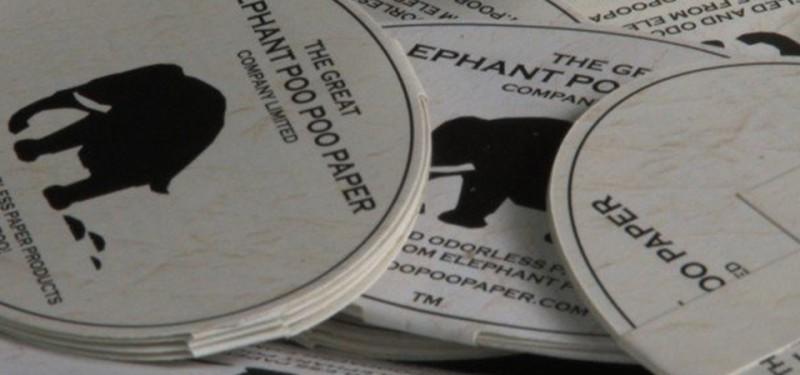 Papieralternative | PooPooPaper Papier aus Dung